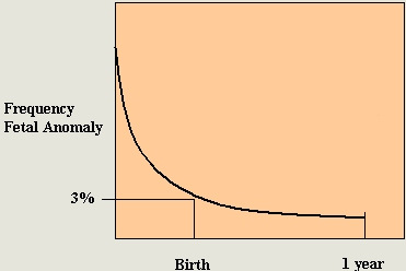 FMGC - Ultrasound Scans In Pregnancy - Detailed Fetal